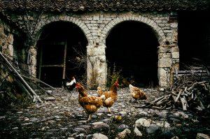 """Immagine segnalata """"Archi di terra"""", Tuili (Italia) di Franco Massa (Italia)"""